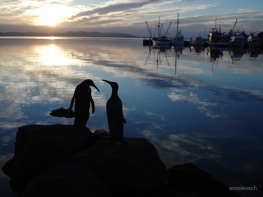 Penguins chatting by aussieusch