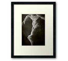Ephemera Framed Print
