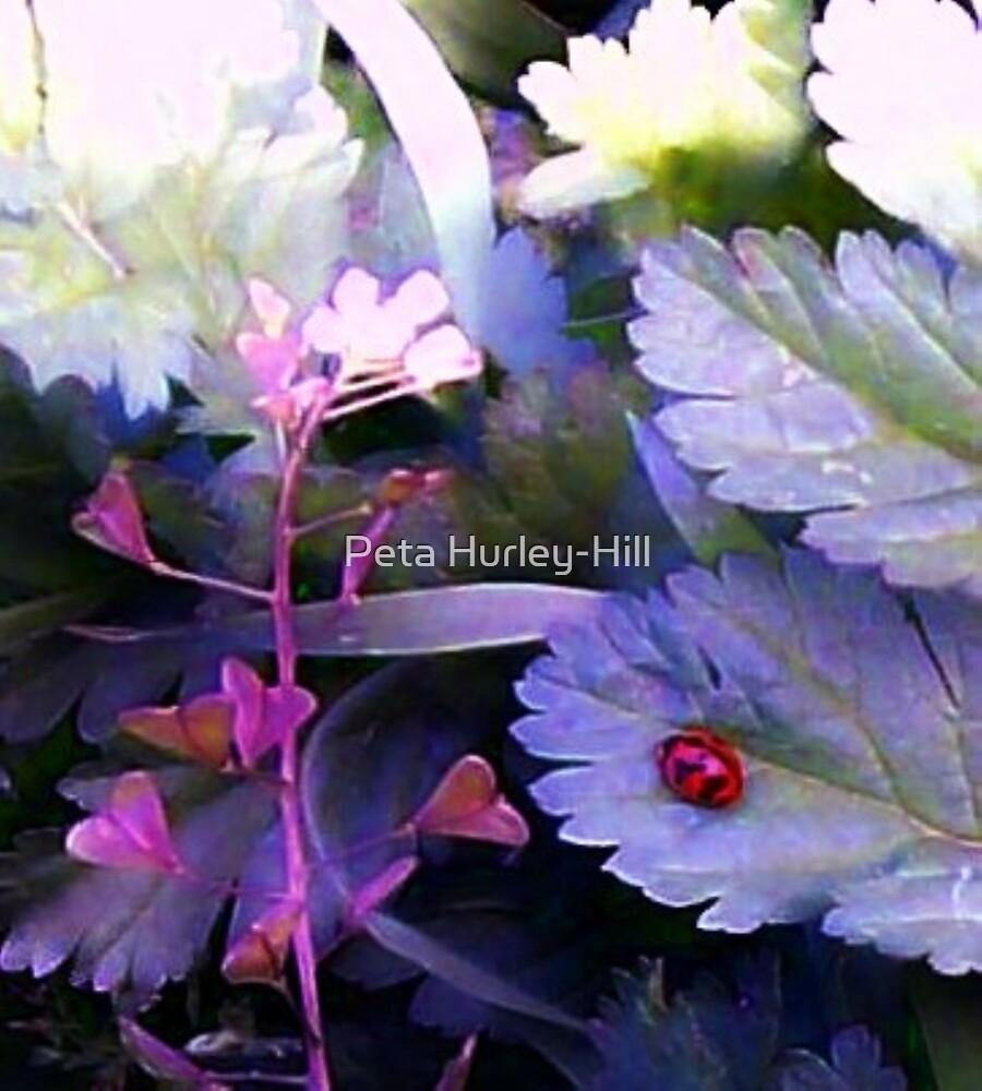 ladybug by Peta Hurley-Hill