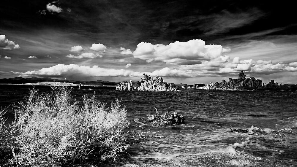 Lake Noir by morealtitude