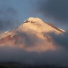 Cotopaxi by sunlight by mickeyb