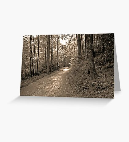 once upon a sunlit path... Greeting Card