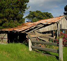 Old shed by Nick Wormald