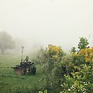Foggy Countryside by AbigailJoy