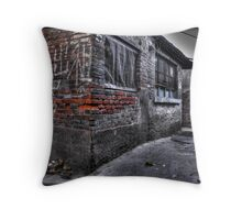 For rent-------$4 per week Throw Pillow