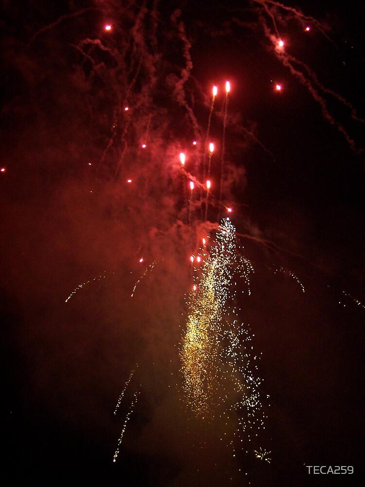 Fireworks 2 by TECA259