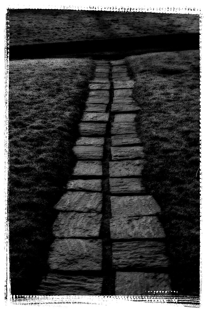 Path by Christian Berven