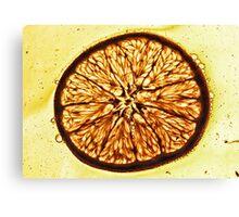 One of Five, Orange Canvas Print