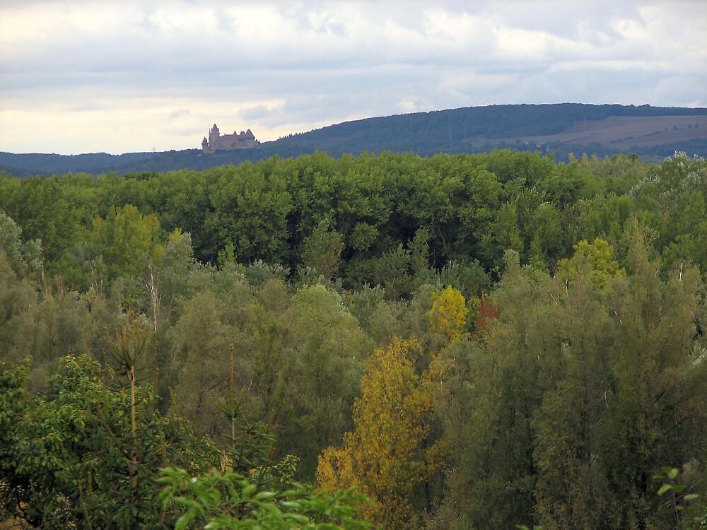 Autumn, Castle. Austria by lewraz