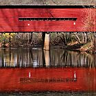 The Sheeder-Hall Covered Bridge by cclaude