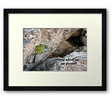 Grow Where You Are Planted Framed Print