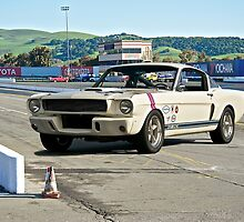1966 Shelby Mustang G.T. 350 III by DaveKoontz