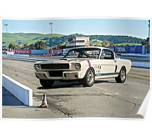 1966 Shelby Mustang G.T. 350 III Poster