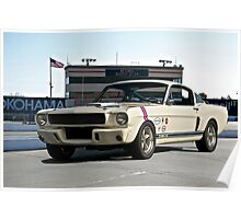 1966 Shelby Mustang G.T. 350 II Poster
