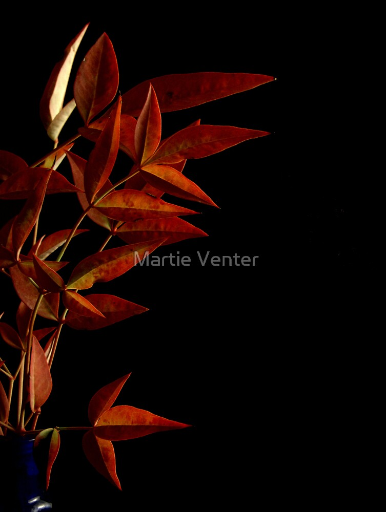 Burnished Autumn by Martie Venter