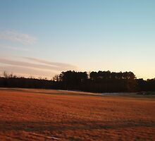 Yorktown Battlefield with sunset glow by Patricia Harduby