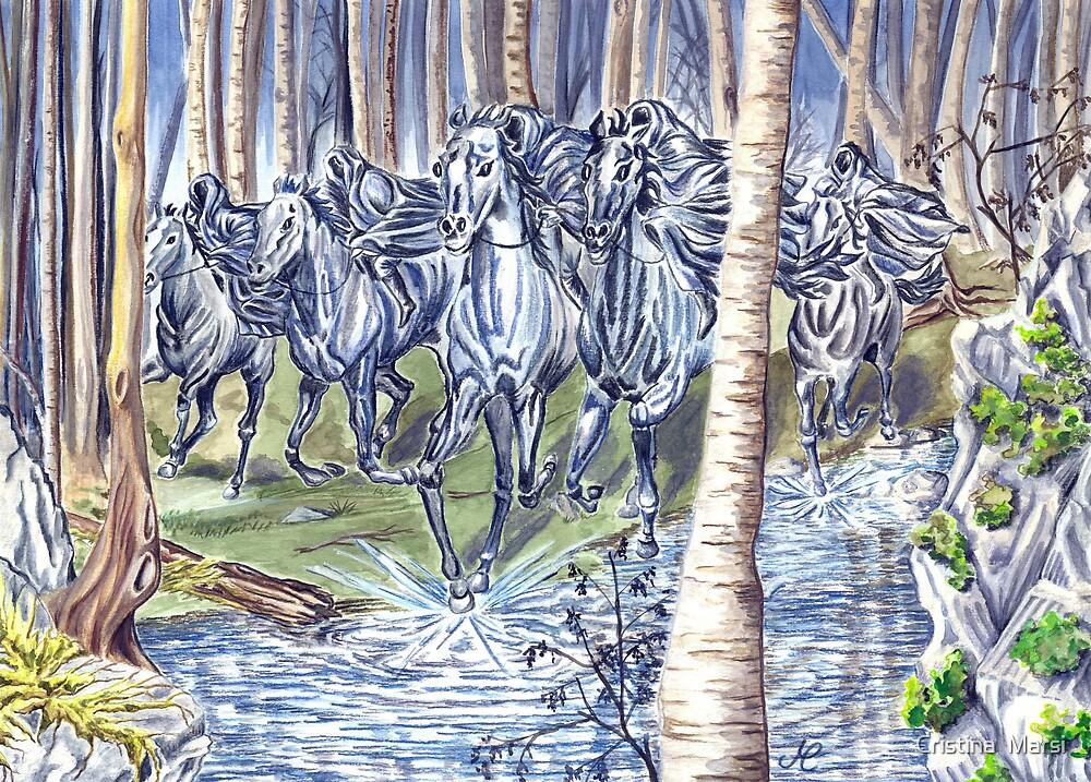 The Black Riders by Cristina  Marsi