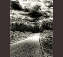 travelling the dark and dangerous path by Beth BRIGHTMAN