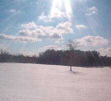 Yorktown Battlefield under snow by Patricia Harduby