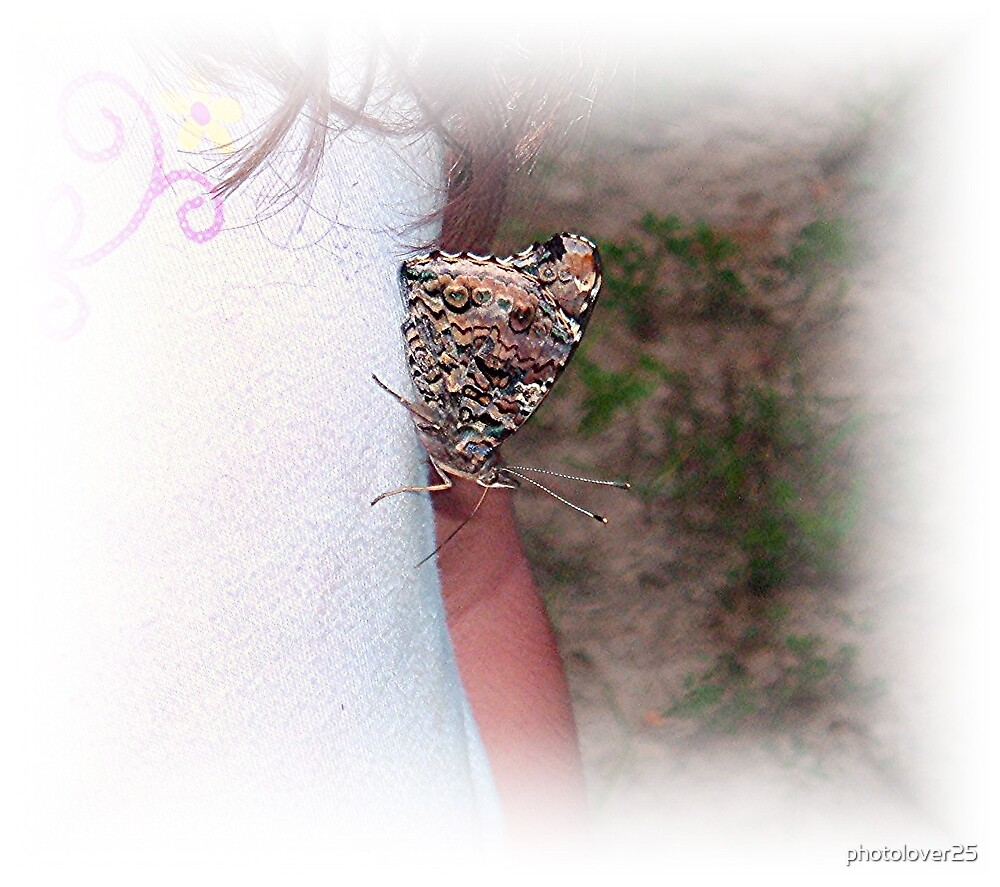 Loving butterfly by photolover25