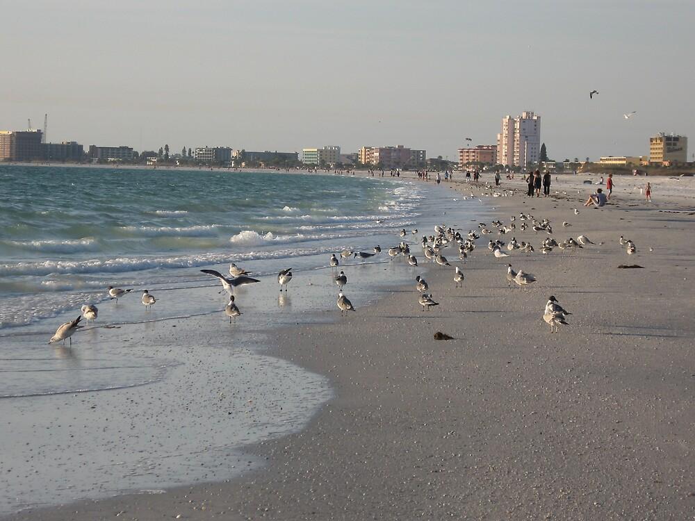 St Pete Beach by Patricia Harduby