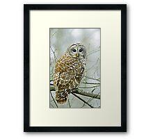Winter's watchman Framed Print