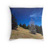 Am Belchen Throw Pillow