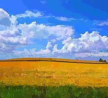 Wheat field in vivid colors by Ron Zmiri