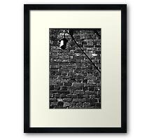 Alley Light Framed Print