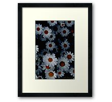 Deeply Daisies Framed Print