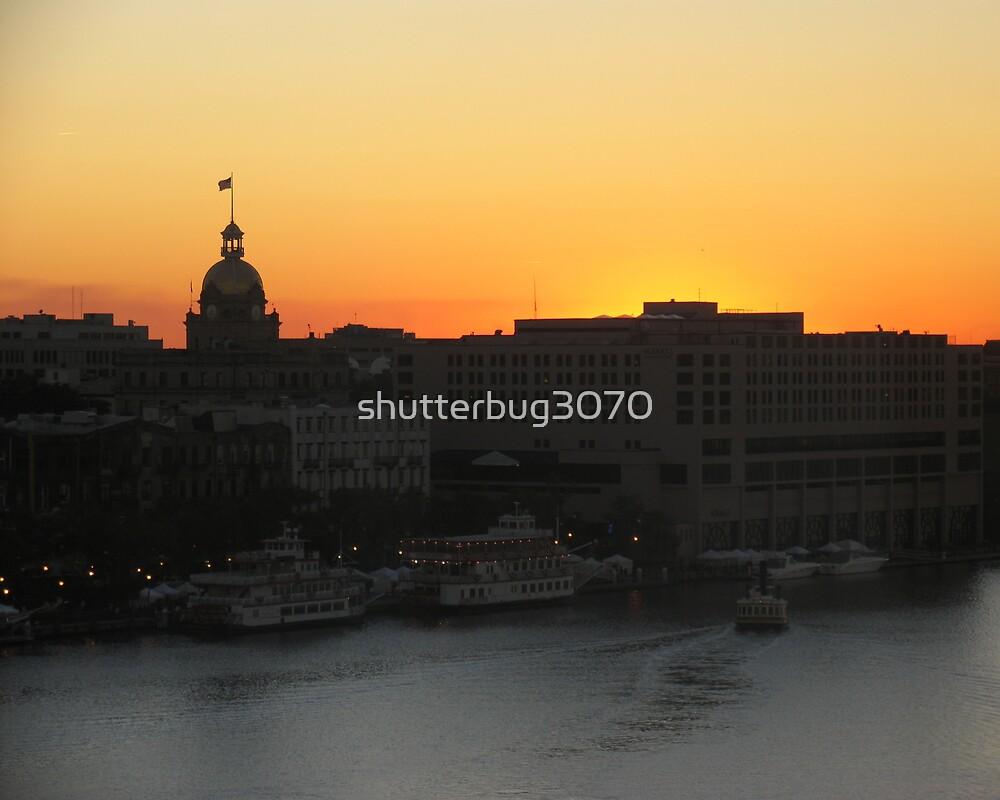 Savannah Silhouette by shutterbug3070