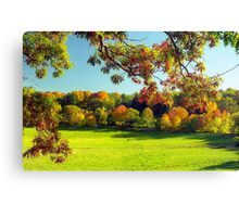 Autumn in Connecticut Meadow Canvas Print