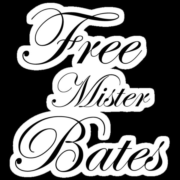 Free Mister Bates by Gina Mieczkowski