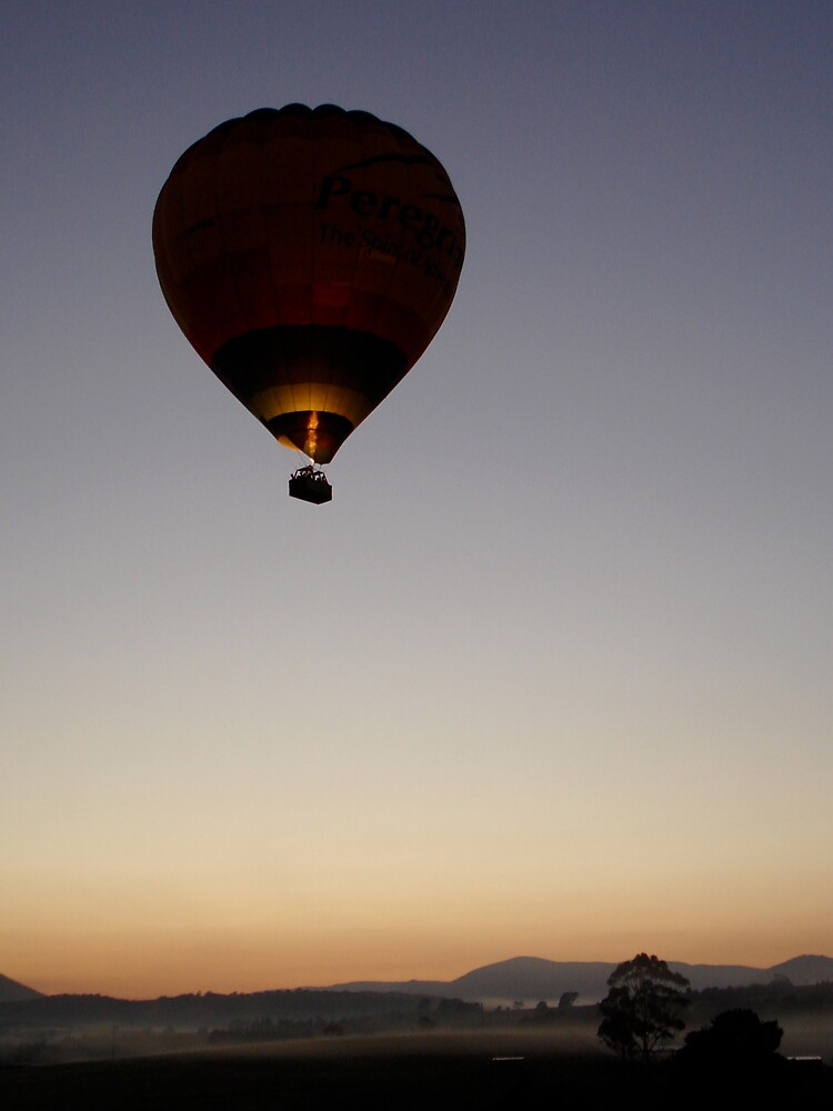 Early Morning Balloon by MichaelA