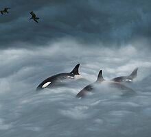 freedom by Diana Calvario
