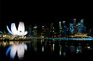 Singapore: The Lotus by Night by Kasia-D