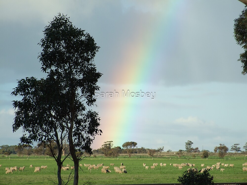Somewhere over the rainbow... by Sarah Mosbey