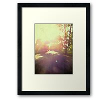 toward spring sun Framed Print