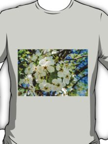 SPRING BLOSSOM PERFECTION T-Shirt