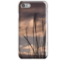 Tall Grasses at sunset iPhone Case/Skin
