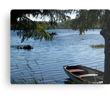Rowing boat moored on the banks of Lough Eske, County Donegal, Ireland. Metal Print