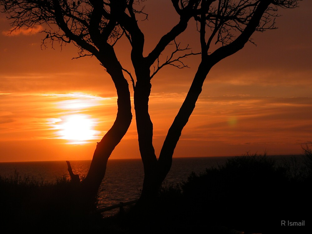 Sunset in Frankston I by Rini Ismail