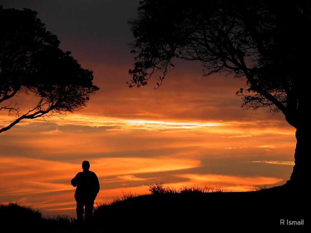 Sunset in Frankston II by Rini Ismail