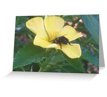 Bumble Brunch Greeting Card
