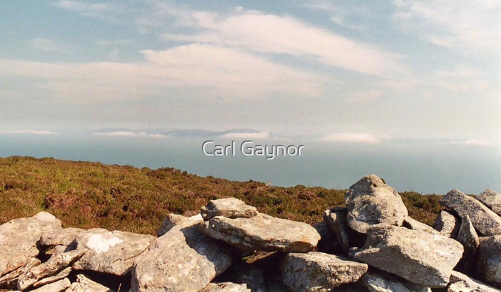 The Summit - Mount Eagle  by Carl Gaynor