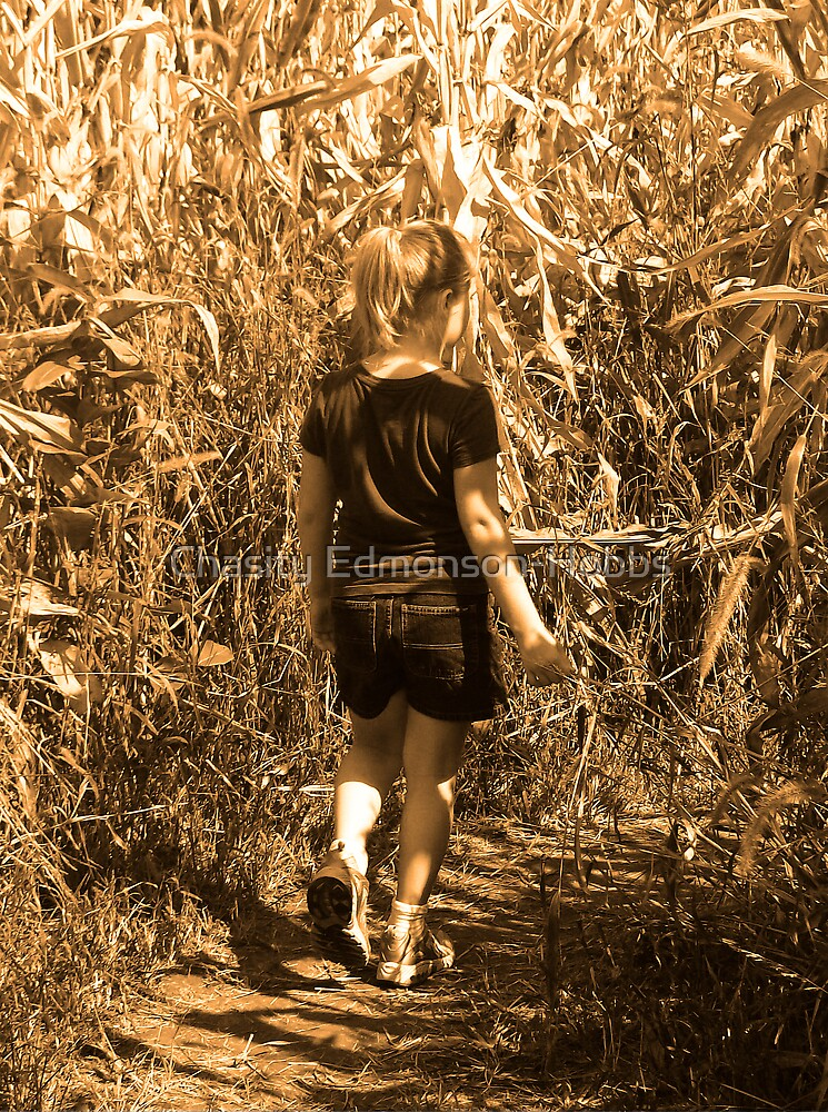 Corn Maze by Chasity Edmonson-Hobbs