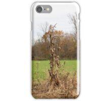 Lone Stalks iPhone Case/Skin