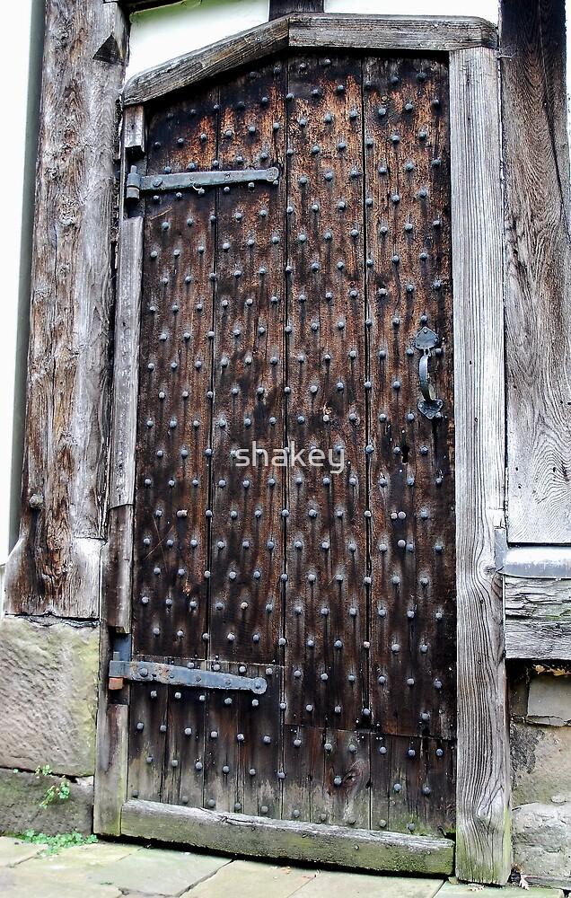Ancient door by shakey