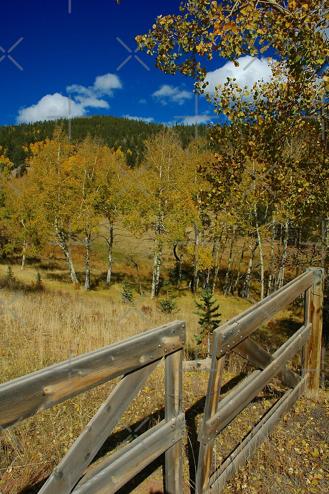 Gateway to the High Country by Holly Werner