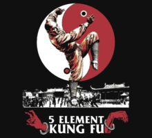 5 Element Kung Fu. by protestall